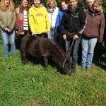 DIFT - Das Deutsche Institut für Tierpsychologie und Tiernaturheilkunde